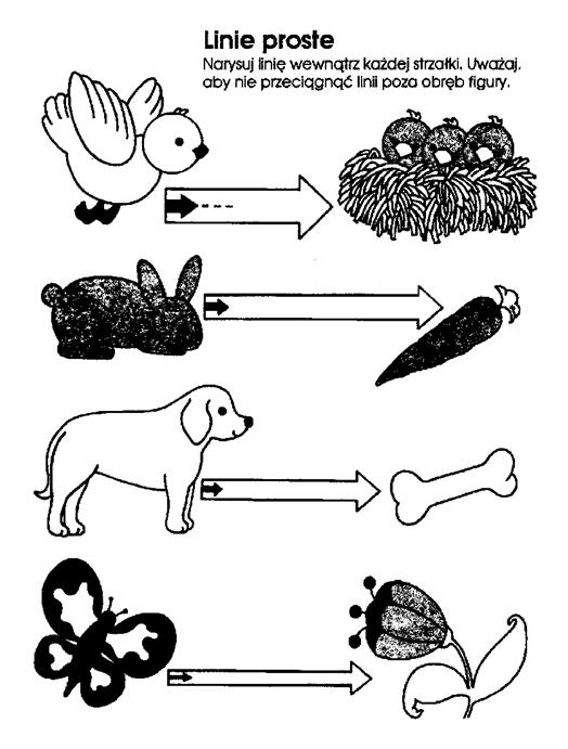 karta pracy przedstawiająca drogi zwierząt - grafomotoryka
