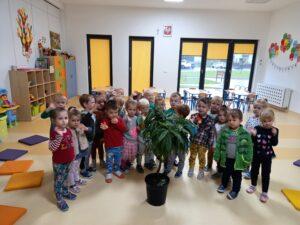 dzieci dtoją wokół drzewa