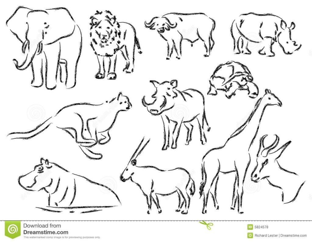 grafika zwierzęta w Afryce