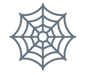 obrazek pajęczyna