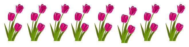 grafika tulipany