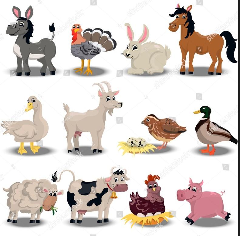 grafkia zwierzęta na wsi