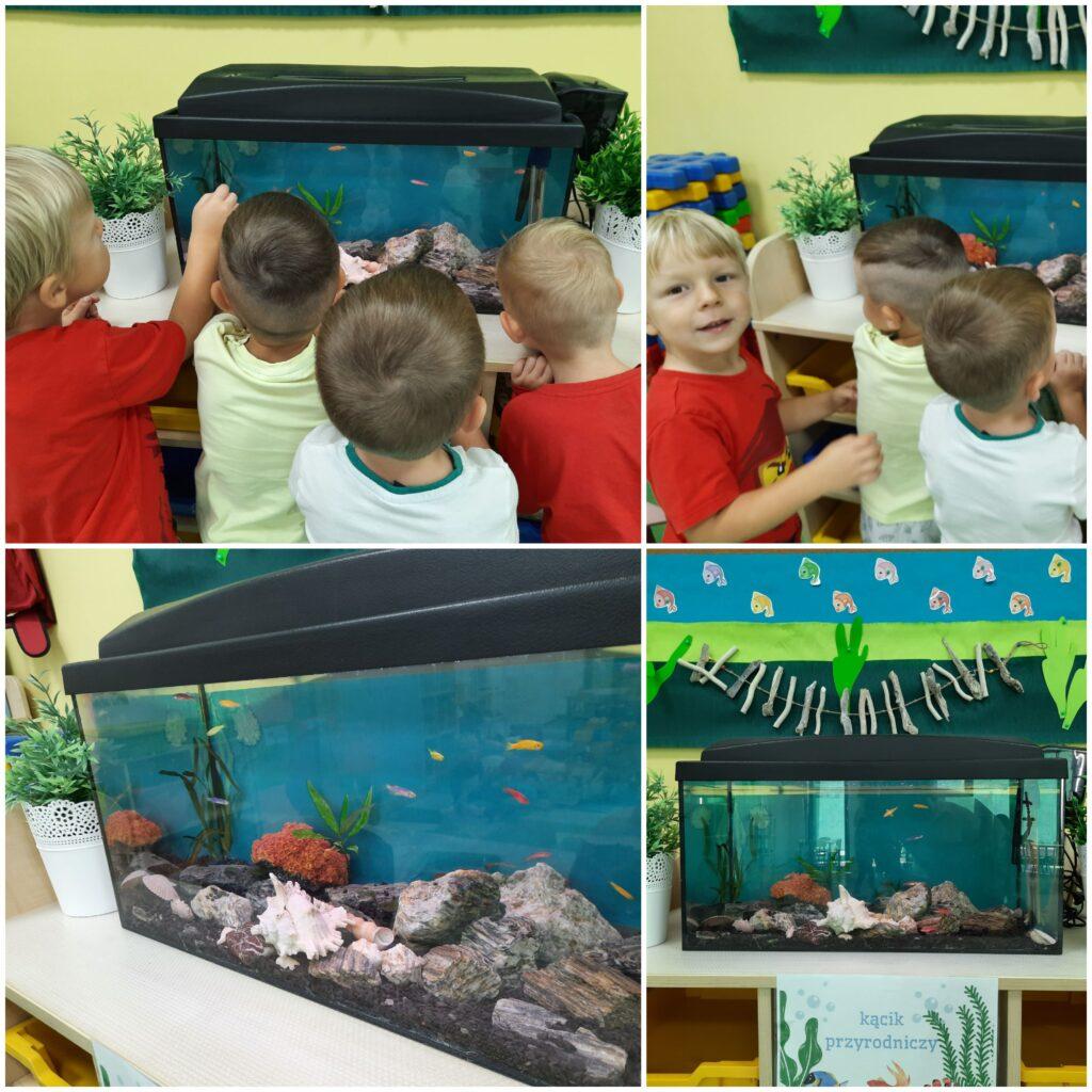 dzieci przy akwarium